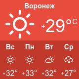 Погода в Воронеже